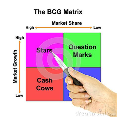 The Bcg Matrix of Hp Free Essay by Ghost Writer